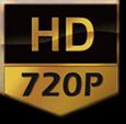 LC-310 Mpix 720P ONVIF, P2P - Kamery obrotowe IP